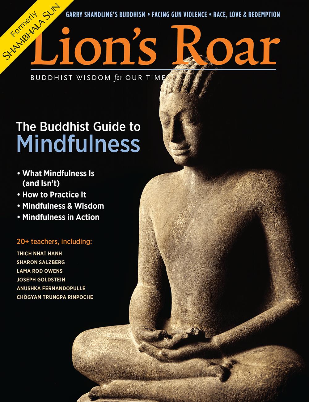 The september 2016 cover of Lion's Roar Magazine.