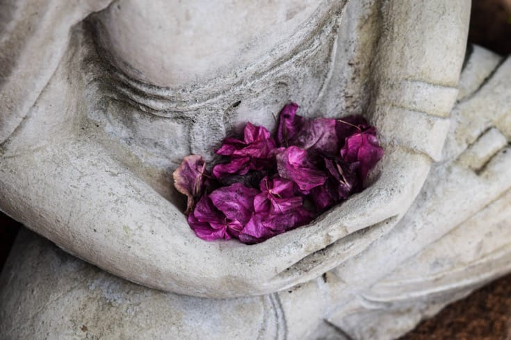 Extreme Detox: How Buddhist monks led me to humility and freedom