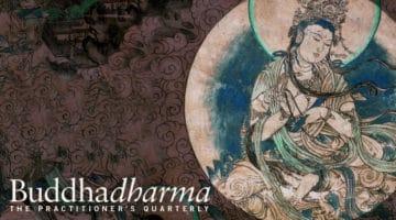 "Buddhadharma cover, ""How to be a bodhisattva"""