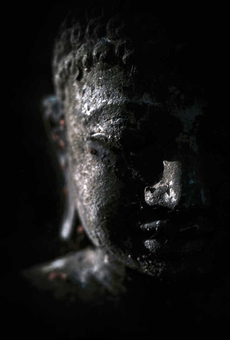 Photo by David Gabriel Fischer.  Buddhist head in shadow.
