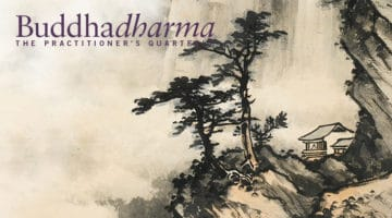 Inside the Winter 2016 Buddhadharma magazine