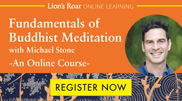 Register for Online Meditation Course with Michael Stone