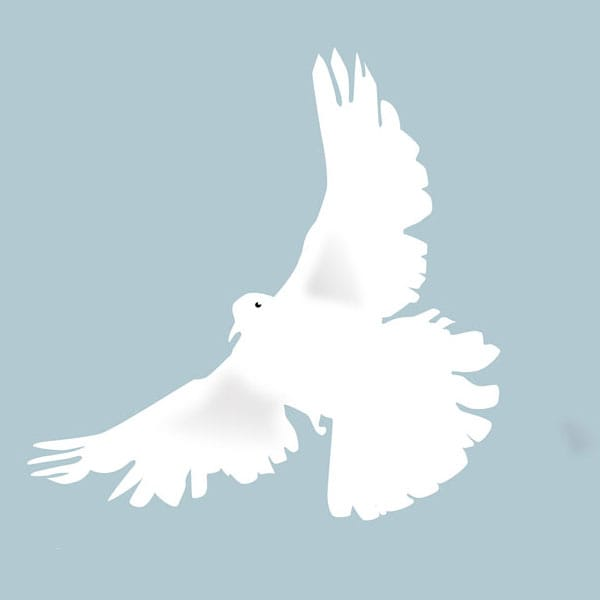 choosing-peace-dove