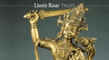 lions_roar_talks