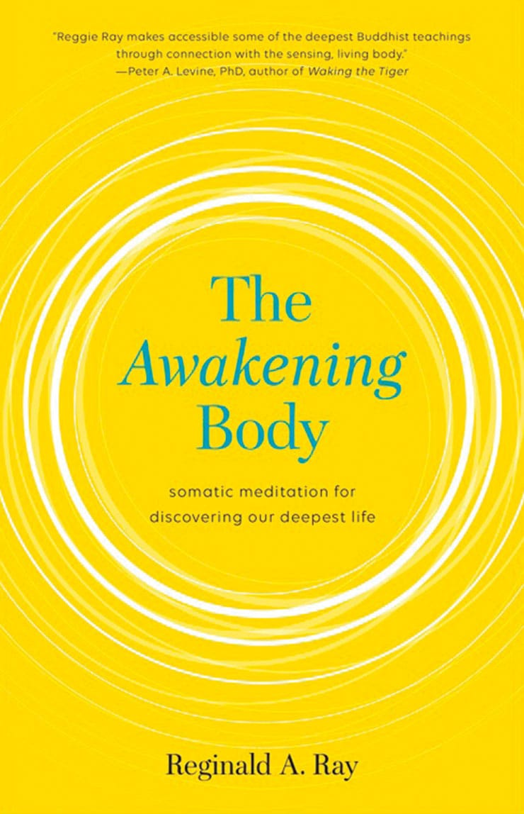 the-awakening-body-cover