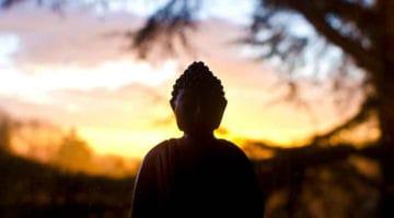 meditation-action-fischer-featured