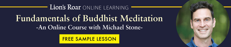 Learn to Meditate Course with Michael Stone