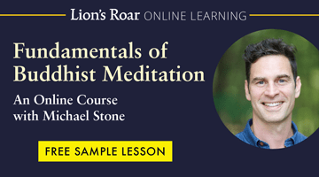 Learn to meditate with Michael Stone