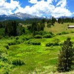 "Land purchased for ""Rocky Mountain Ecodharma Retreat Center"" in Colorado wilderness"