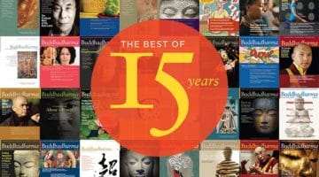Inside the Fall 2017, 15th-anniversary issue of Buddhadharma: The Practitioner's Quarterly