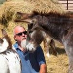 Donkey Dharma