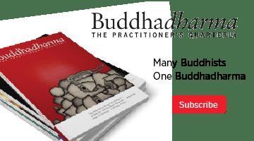 Buddhadharma Subscription Ad