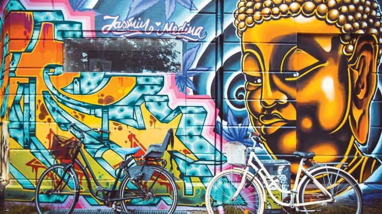 Buddha, the Ultimate Radical