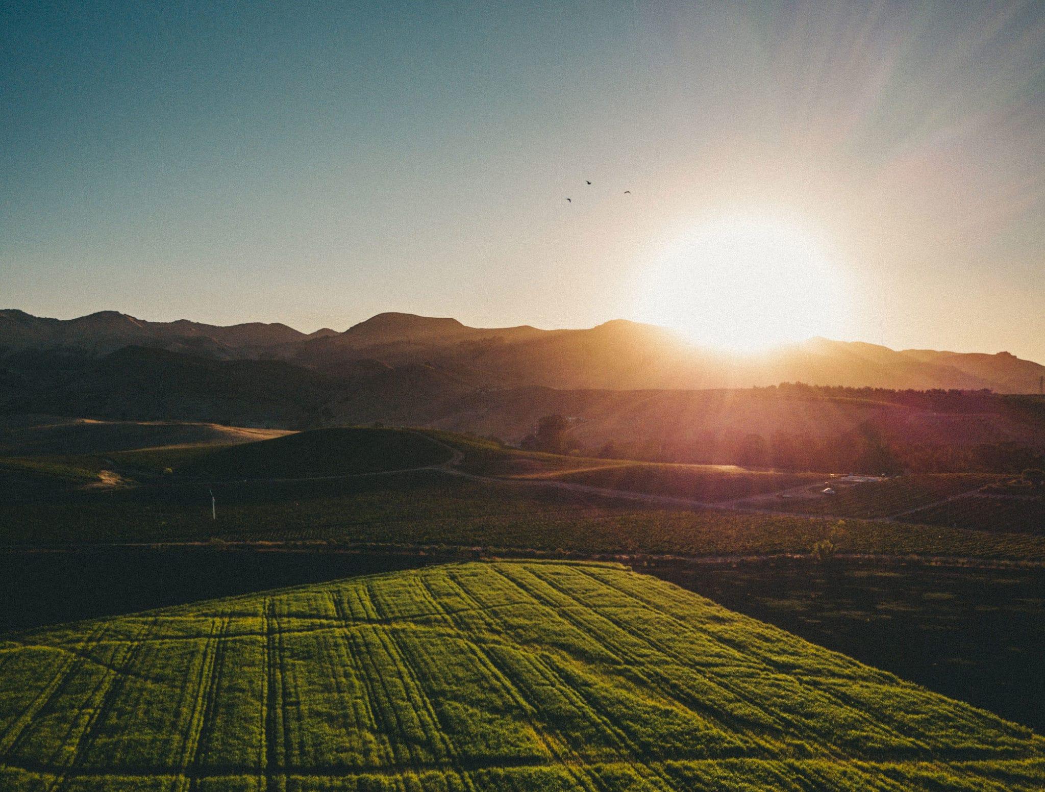 A sun shining over a field.