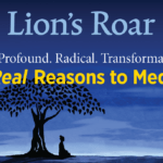 Inside the July 2018 Lion's Roar magazine