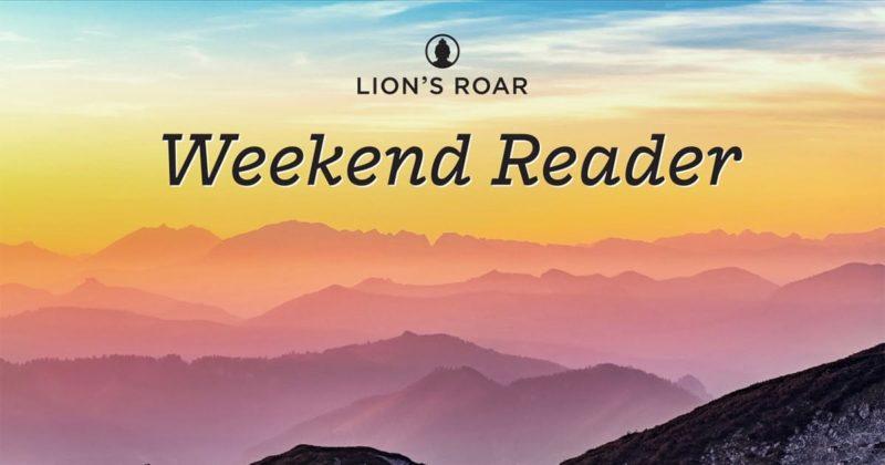 The Case for Rebirth - Lion's Roar