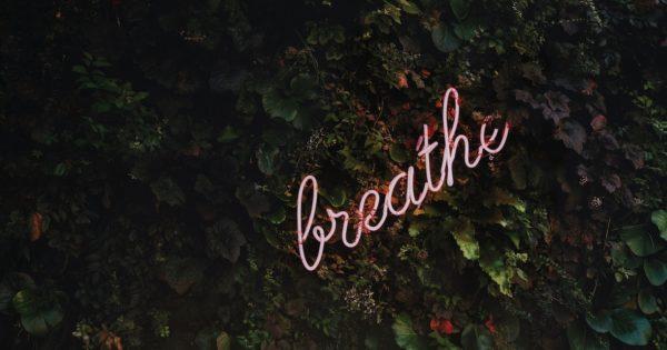 How Meditation Saved My Mind
