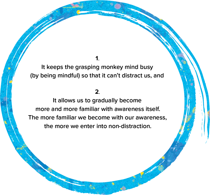 It keeps the grasping monkey mind busy (by being mindful) so that it can't distract us. And it allows us to gradually become more and more familiar with awareness itself. The more familiar we become with our awareness, the more we enter into non-distraction.
