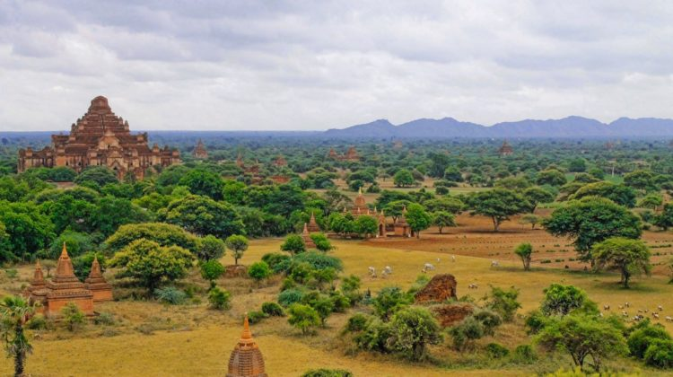 Ancient Buddhist city of Bagan added to UNESCO World Heritage List