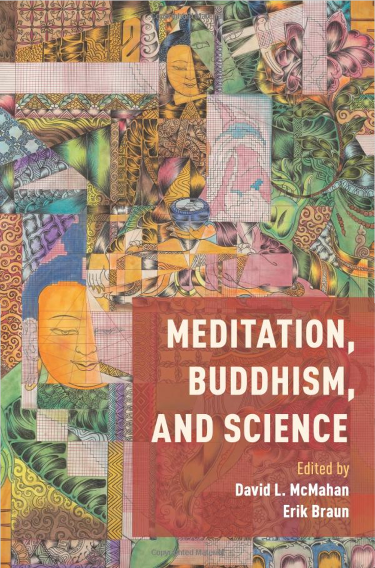 Book cover for Meditation, buddhism and science. It shows a collage and the text in the right hand corner.