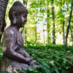 Share Your Wisdom: What do you say when somebody asks why you practice Buddhism?