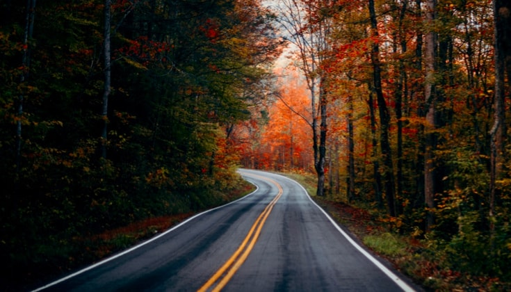 Autumn road.