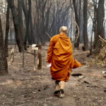 Bushfires threaten Buddhist communities in Australia