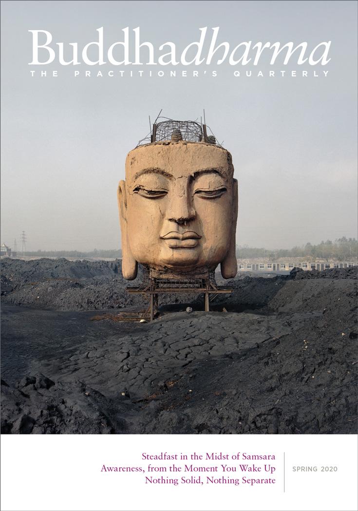 Photo of Buddhadharma Spring 2020 cover.