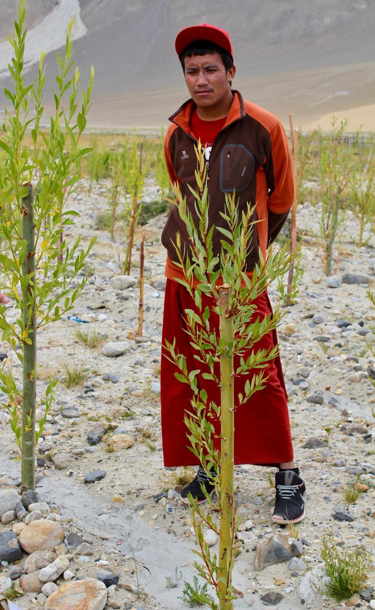 Így küzdenek a szerzetesek a klímaváltozás ellen Ladakhban