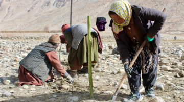 How Buddhist monks in Ladakh are fighting climate change