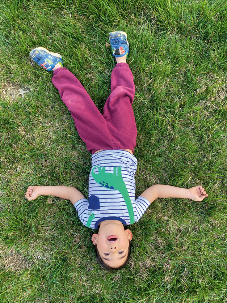 A child laying in the grass. They are wearing a striped shirt with a dinosaur and purple pants.