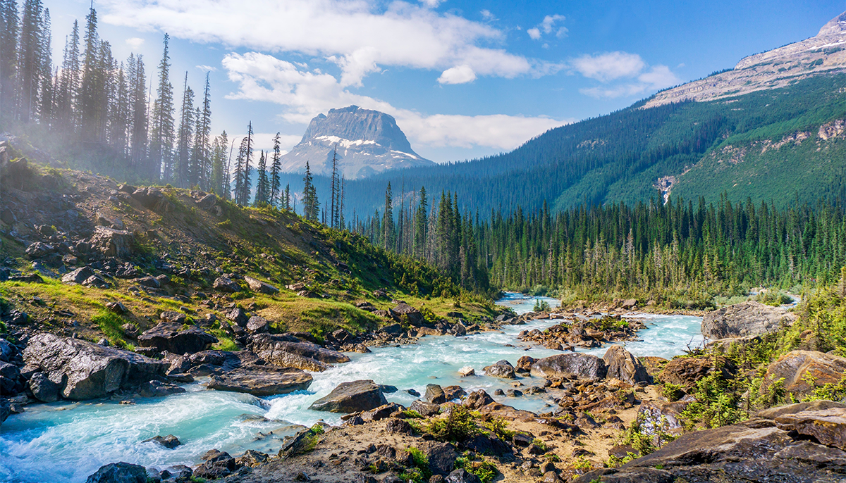 A scenic photo featuring a river, trees, and mountains.