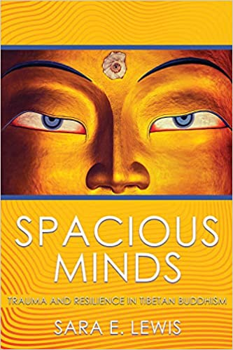 The book cover for Spacious Minds. There are two eyes above and below a yellow background.