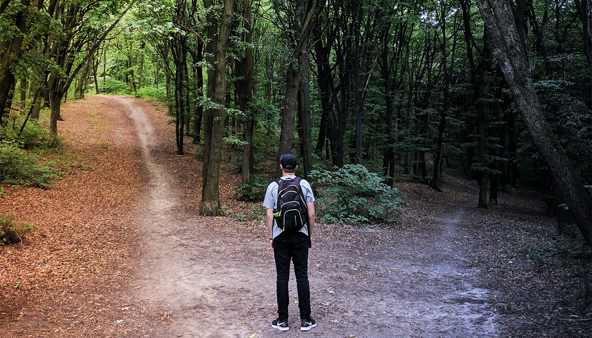 Man stands in front of two forest paths