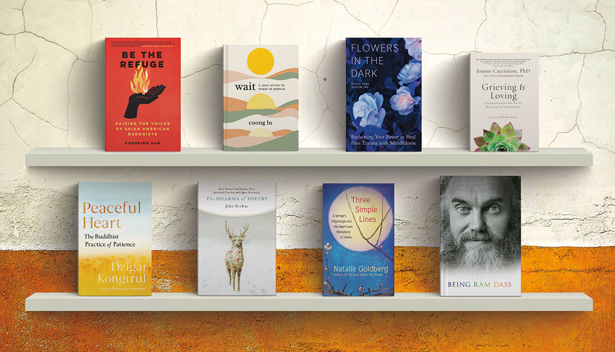 A photo of eight books covers on two different shelves.