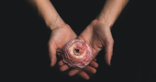 Four Meditations to Practice in the Wake of a Tragedy